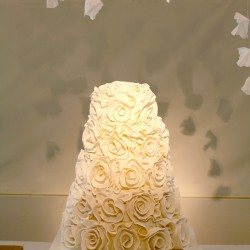 Polivka/Langsdon Wedding - Cake