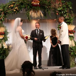 Fall Harvest Wedding Chuppah | Greenery and Wheat with Maroon Accents