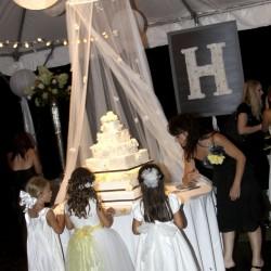 Henry Wedding - Cake Table